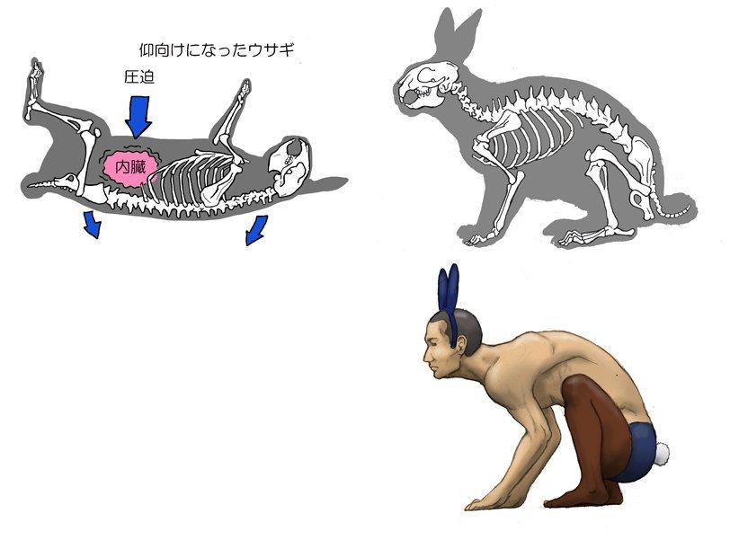 Человек подобен животным в фантазиях японского художника