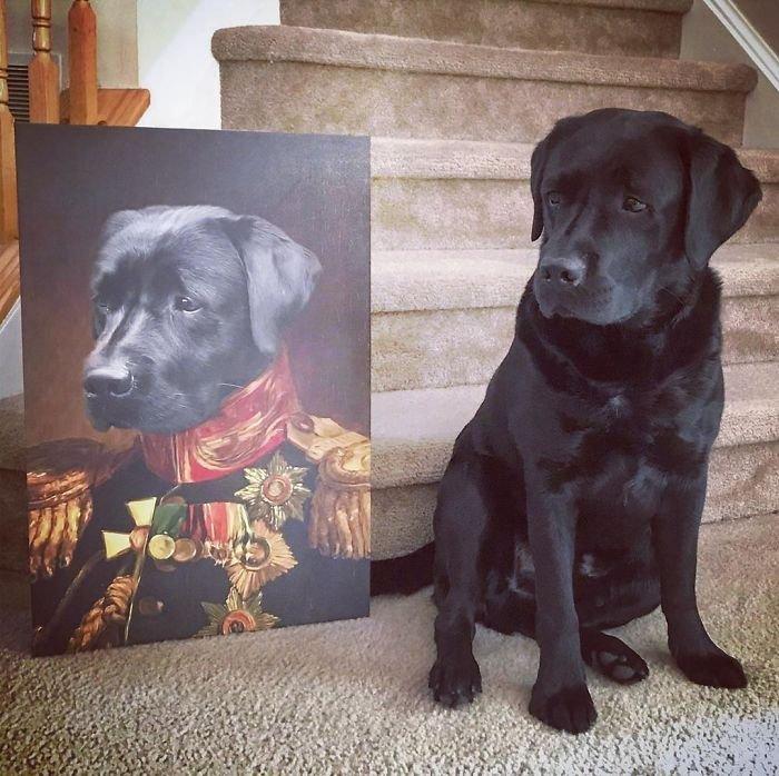 Портреты домашних животных в стиле эпохи Возрождения