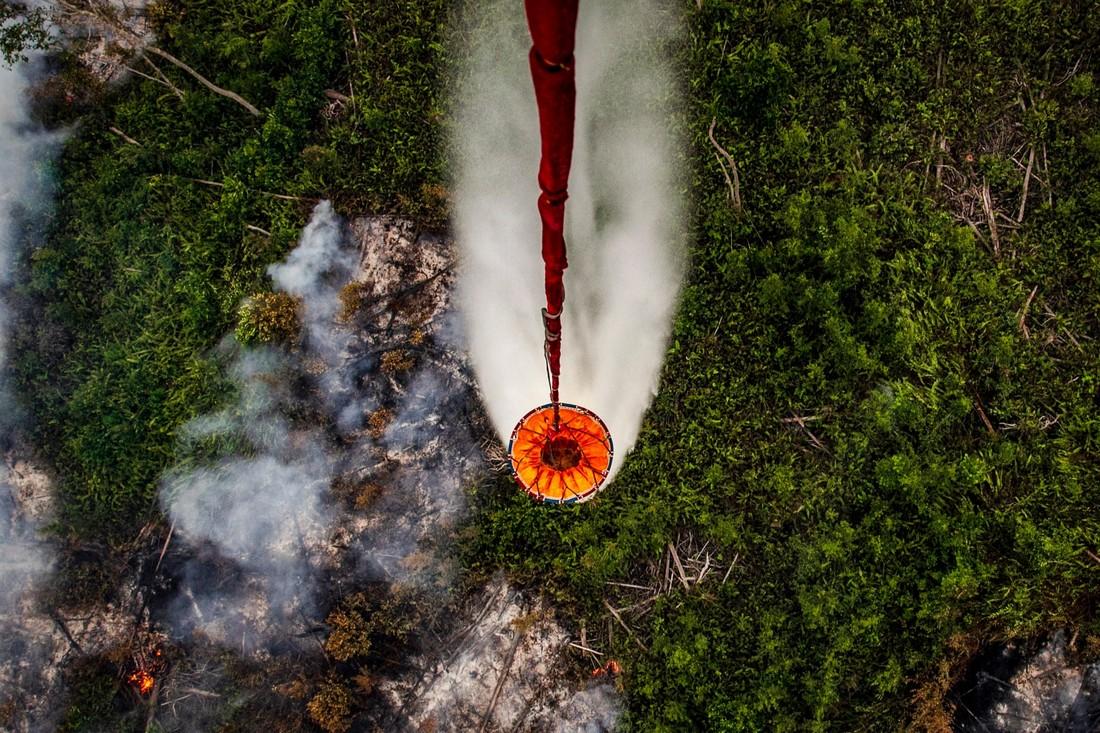 Катастрофические лесные пожары в Индонезии