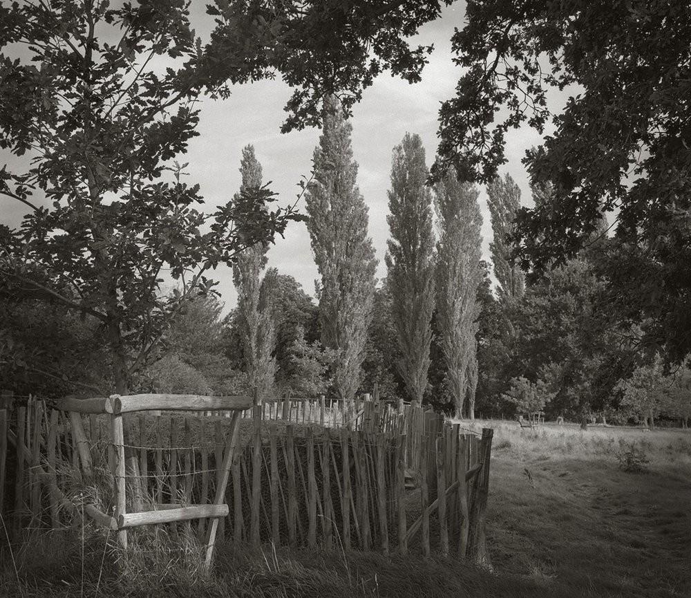 Фотопроект В саду от Бет Доу