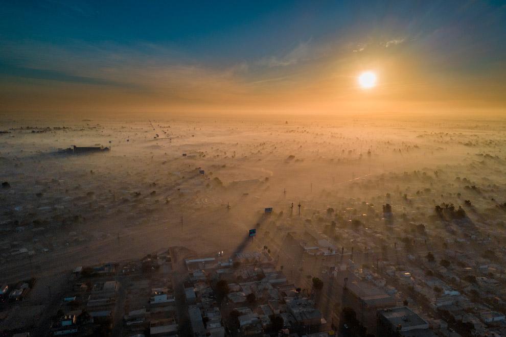 Конкурс Экологический фотограф 2019 года