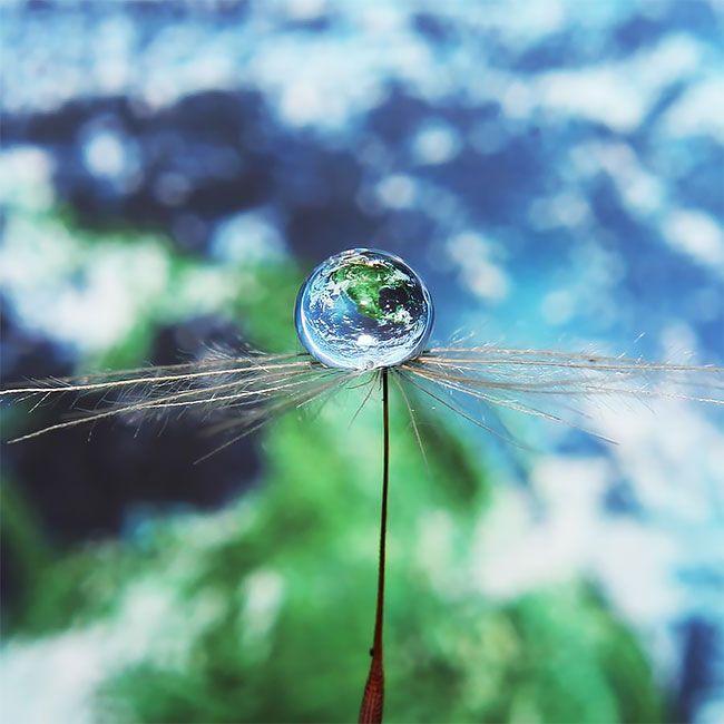 Забавные капли воды от креативного фотографа