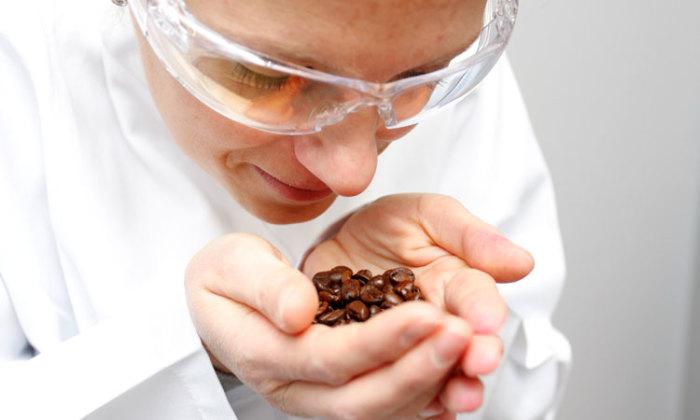Занимательные и необычные факты про шоколад