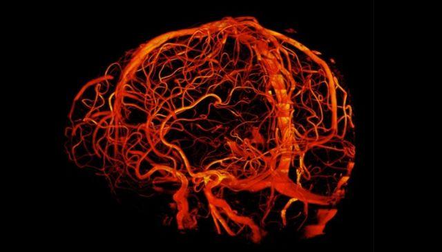 Мир глазами врача-рентгенолога