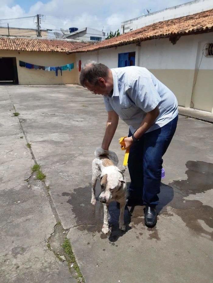 Бразильский священник помогает бездомным собакам