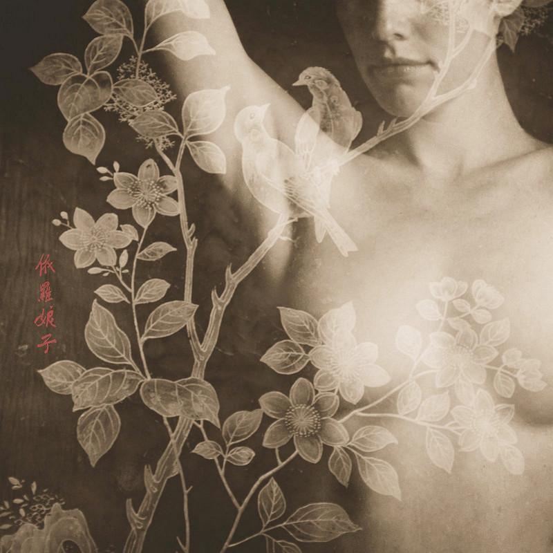 Аллюзии на японские стихи от фотографа Брижит Карнохан
