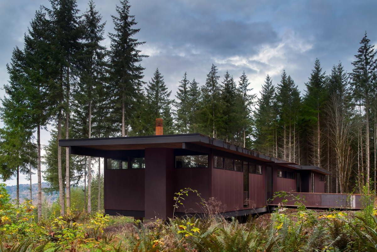Одноэтажный лесной дом в Вашингтоне