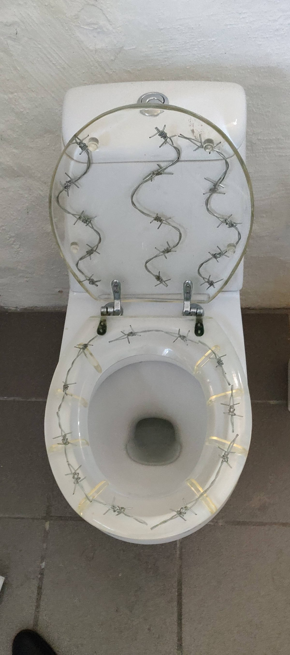 Необычные дизайнерские решения для туалетов
