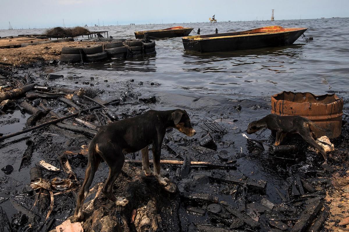 Рыбалка у загрязненных нефтью берегов Венесуэлы