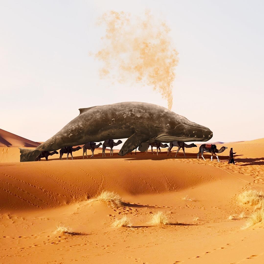 Удивительные фотоманипуляции от Мартейна Схрейвера