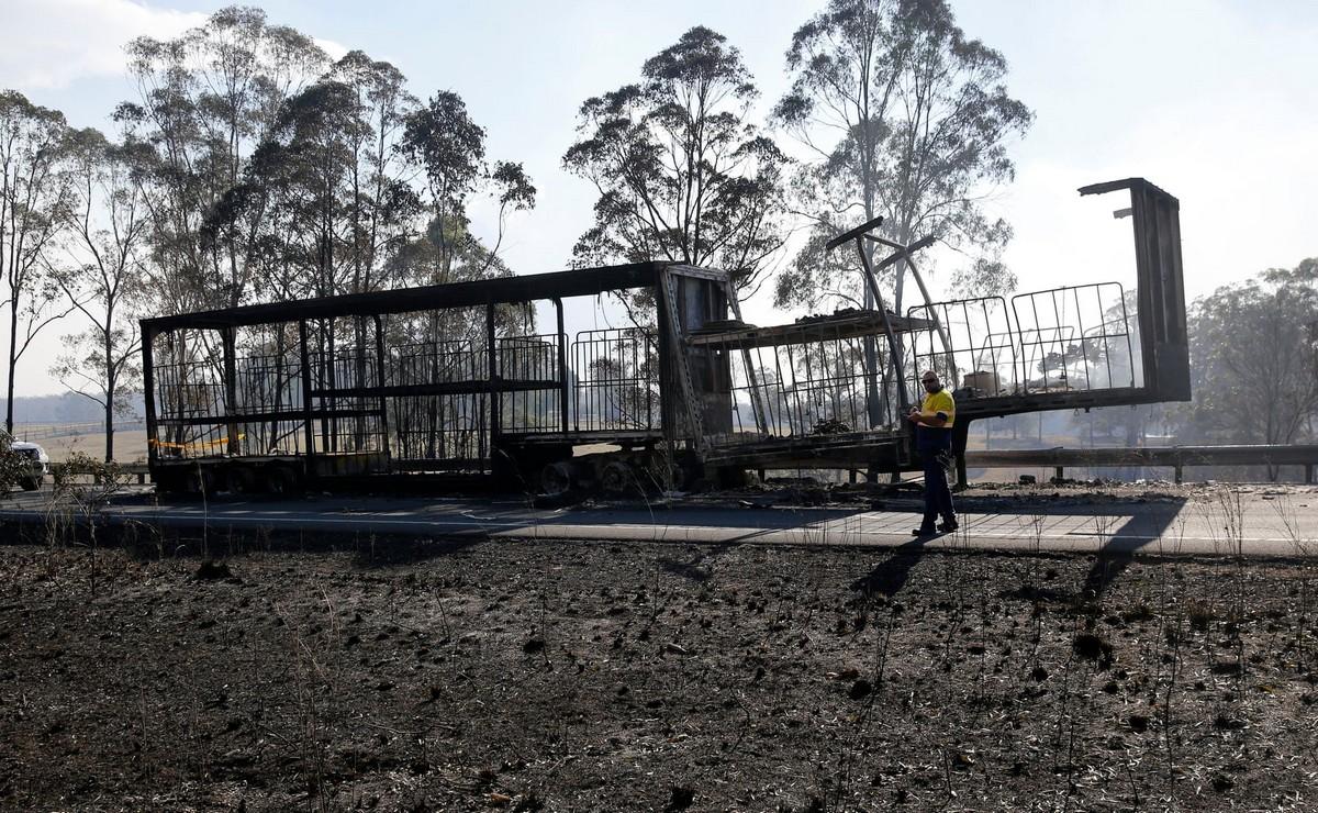 Лесные пожары бушуют в Австралии