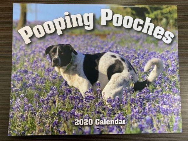 Странный календарь с собаками на 2020 год