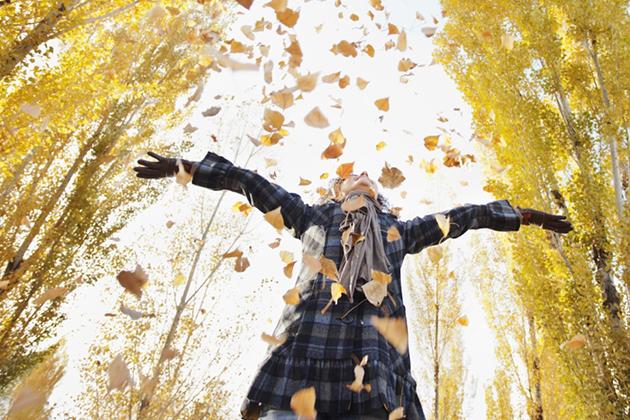 Причины радоваться поздней осени