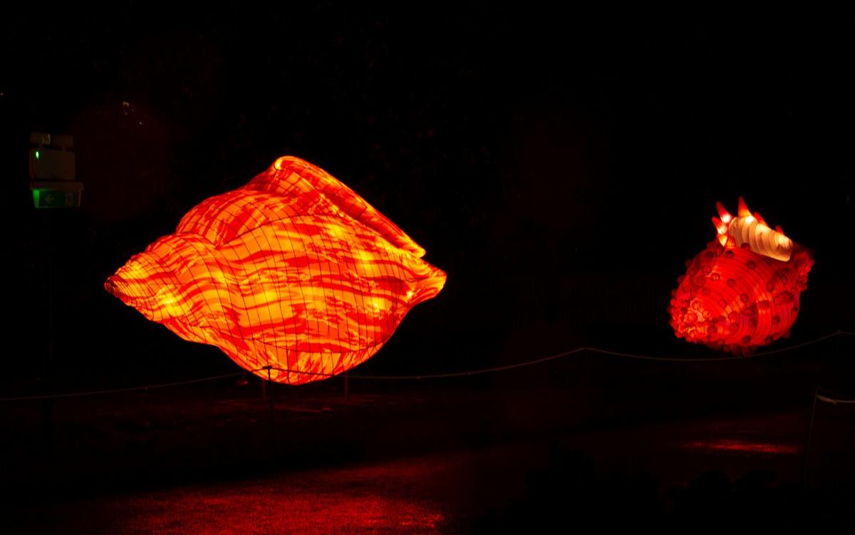 Светящиеся скульптуры на фестивале огней в Париже