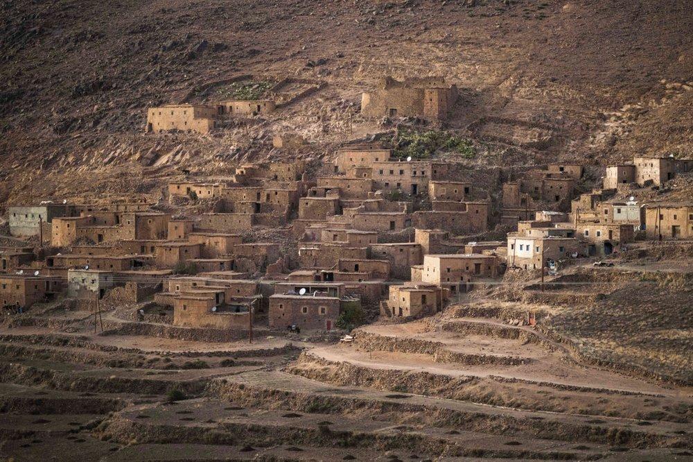 Трудоемкий сбор шафрана в Марокко