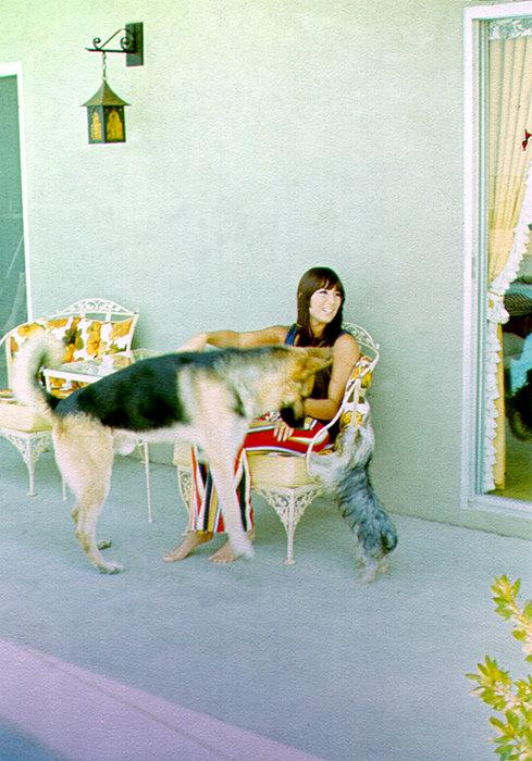 Знаменитости со своими милыми собаками
