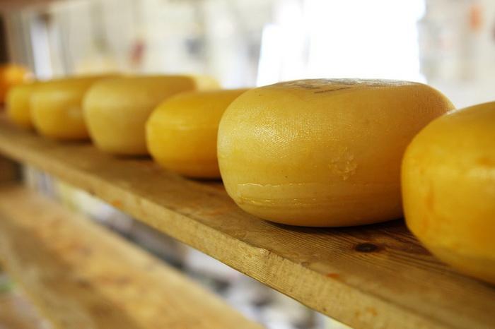 Интересные факты о сыре от неолита до наших дней