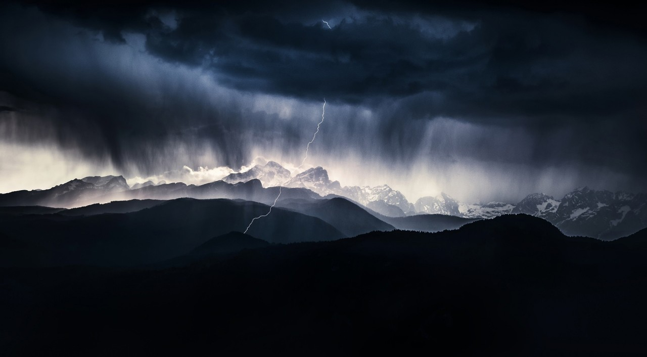 Лучшие снимки с конкурса Nature Photographer of the Year 2019