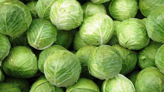 Частые ошибки при квашении капусты
