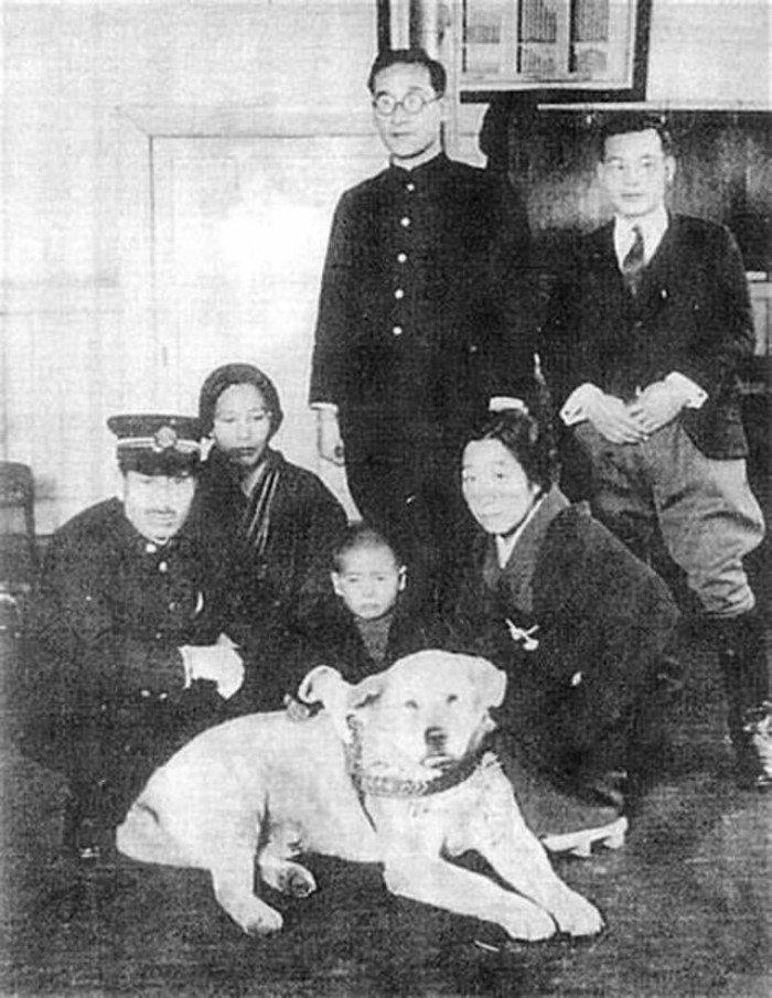 Редкие фотографии Хатико, самого преданного пса в мире