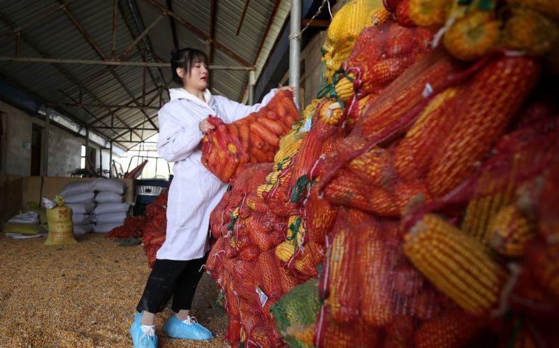 Необычное приданое для невесты из Китая
