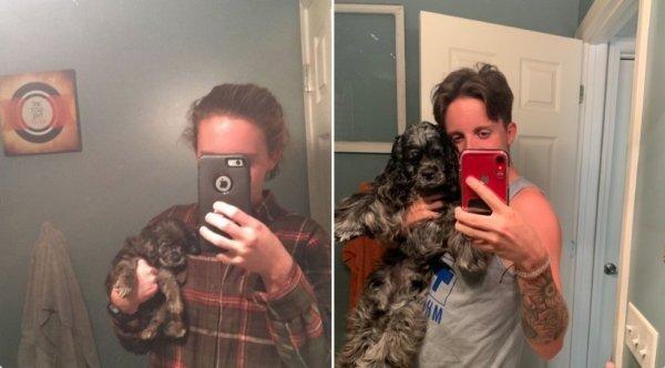 Как быстро выросли пёсели на снимках тогда и сейчас