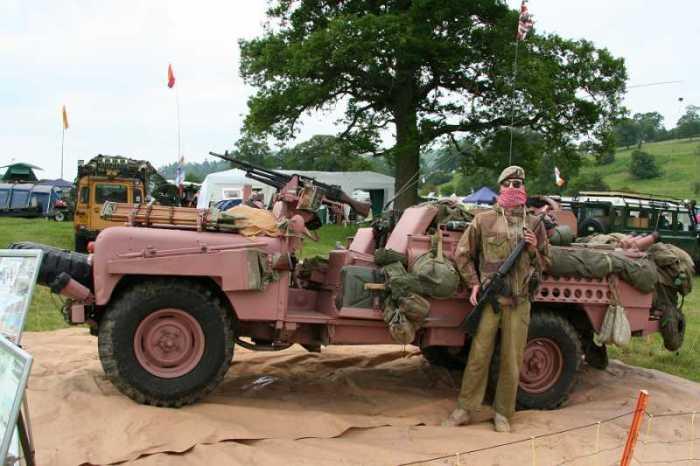 Для чего в некоторых армиях используют розовый камуфляж