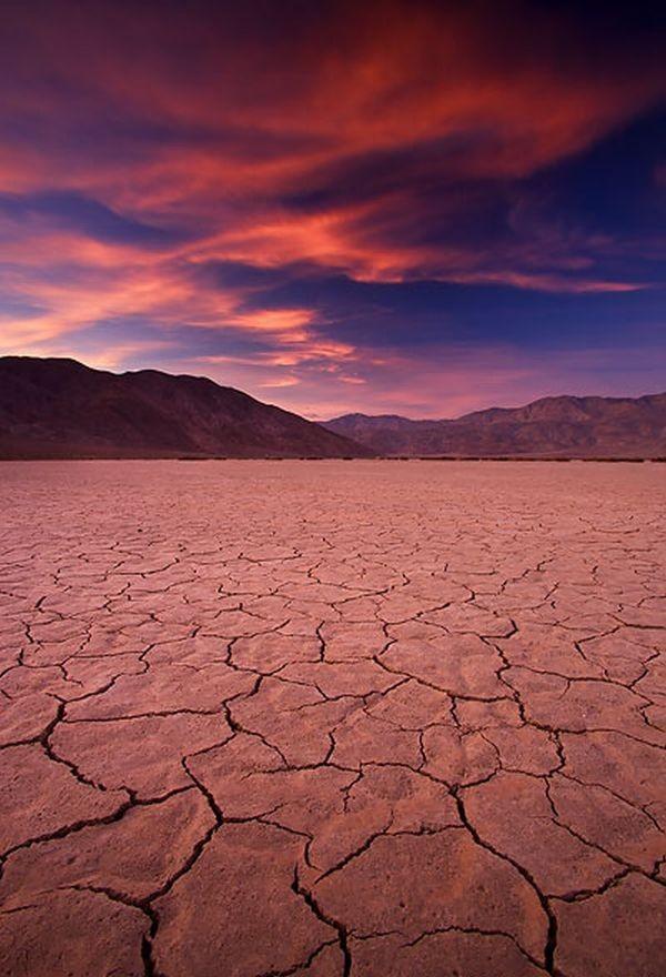 Сказочная пустыня Анза-Боррего