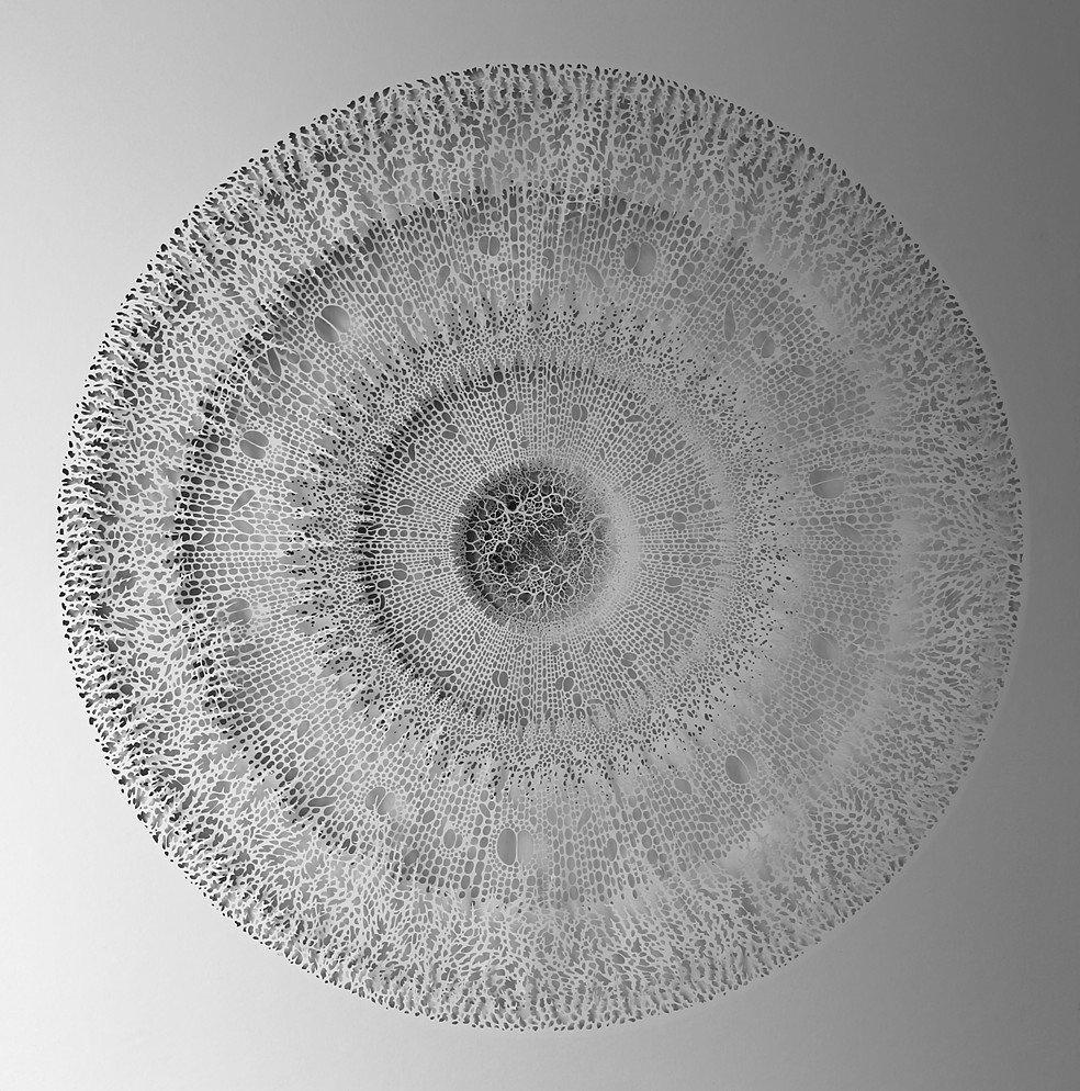 Удивительные бумажные скульптуры Рогана Брауна