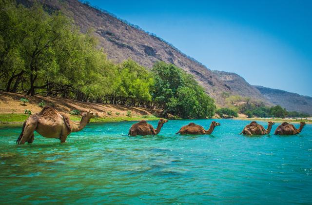 Природные и исторические достопримечательности Омана
