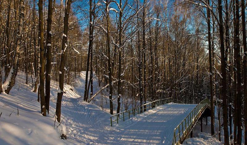 Кардиотренировки для зимы, которые помогут быстро прийти в форму