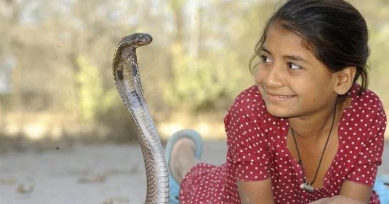 Индийская девочка Каджол Хан ладит со змеями