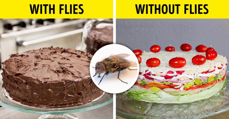 Если бы все насекомые на нашей планете исчезли