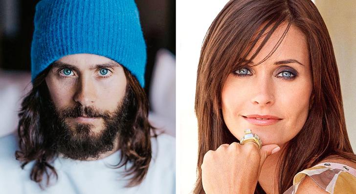 Некоторые знаменитости очень похожи друг на друга