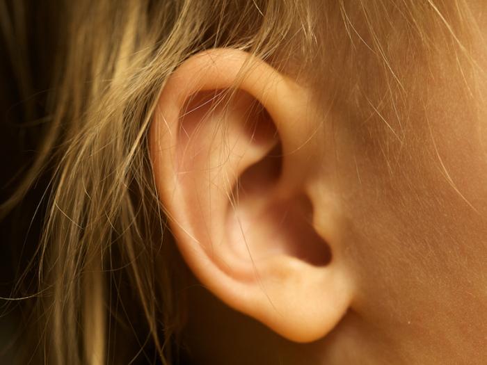Все интересные факты об ушной сере