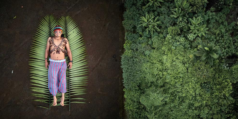 Финалисты фотоконкурса Sony World Photography Awards 2020