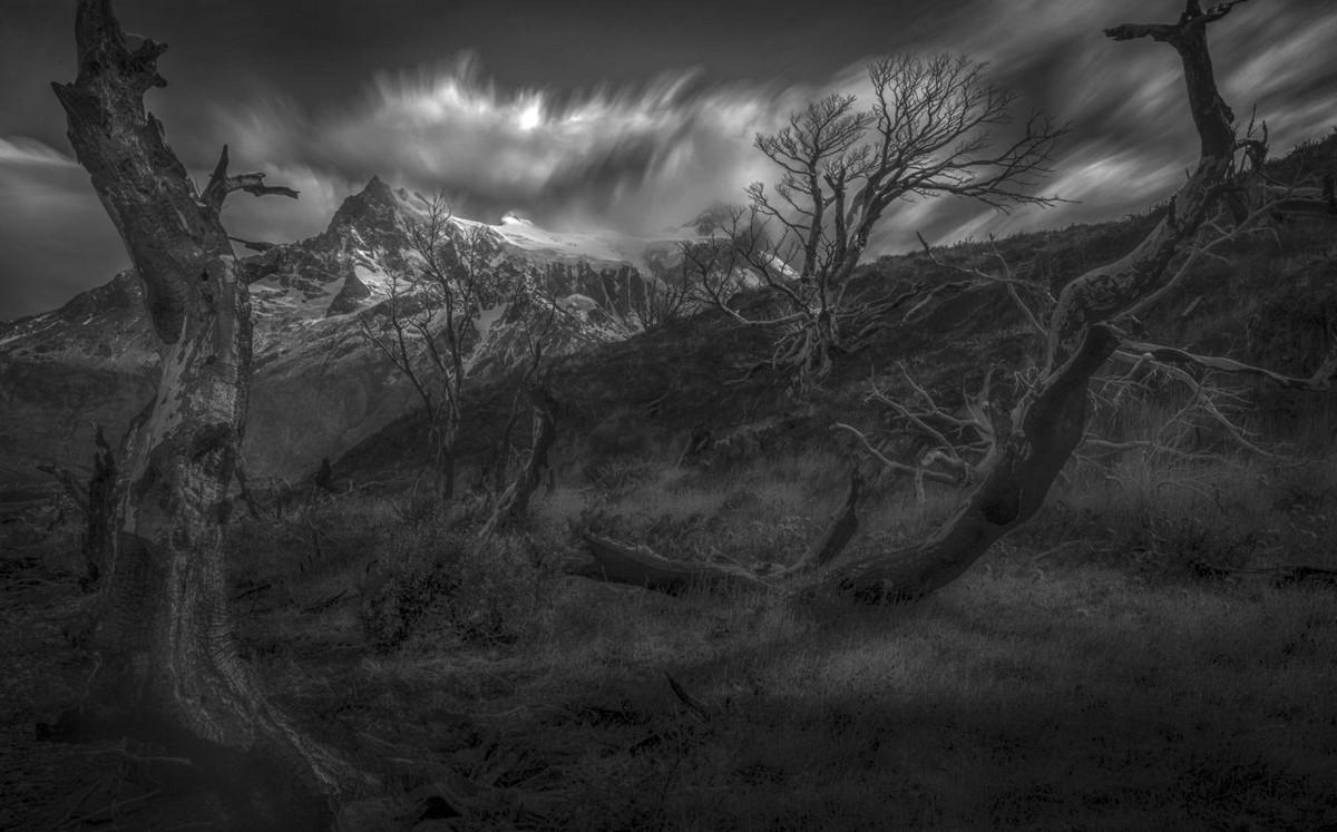 Минималистичные снежные пейзажи от Петера Свободы