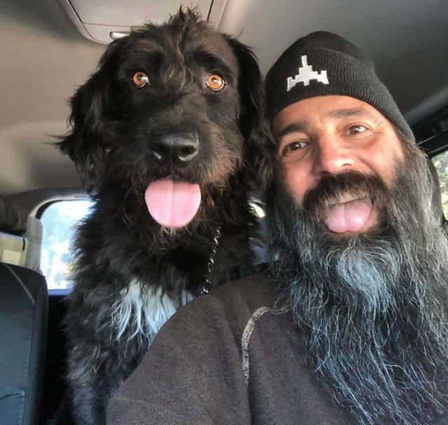Собаки и добрые истории, которые поднимут вам настроение