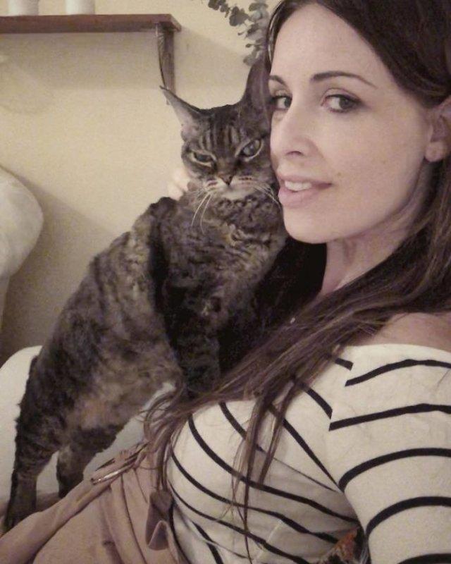 Кошка Барбара, которая постоянно выглядит сердитой