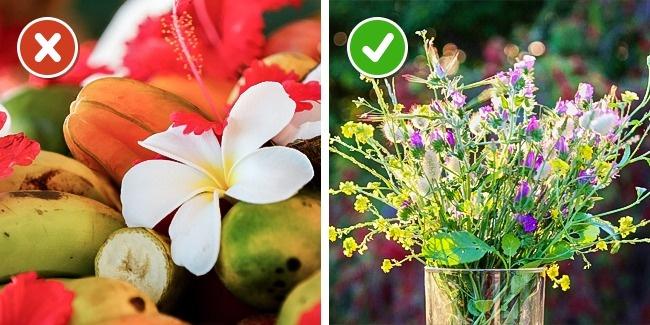 Простые способы продлить жизнь срезанным цветам