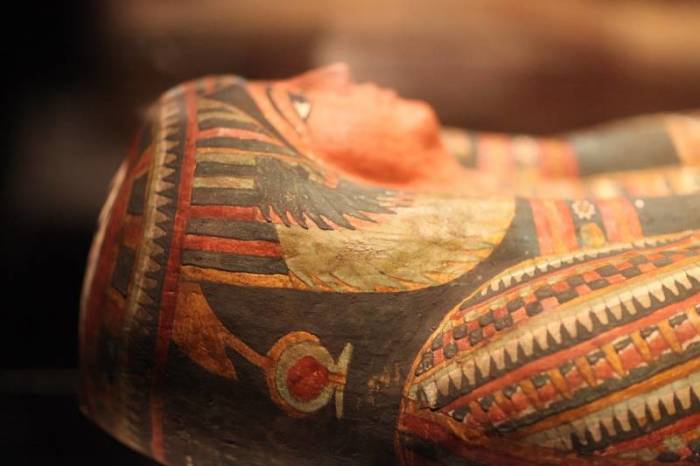 Протезы, вошедшие в историю цивилизации