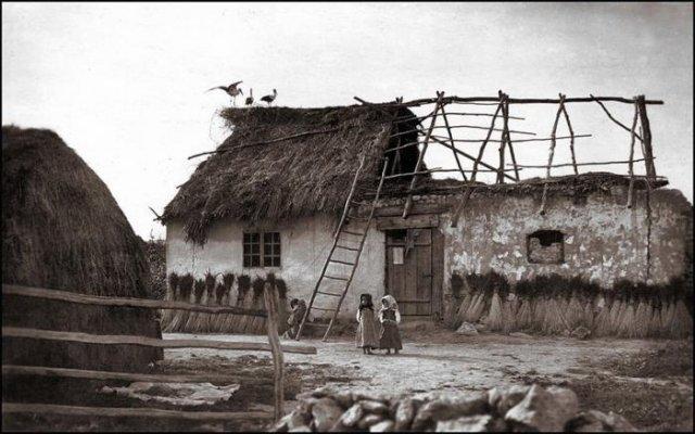 Немного интересных исторических снимков