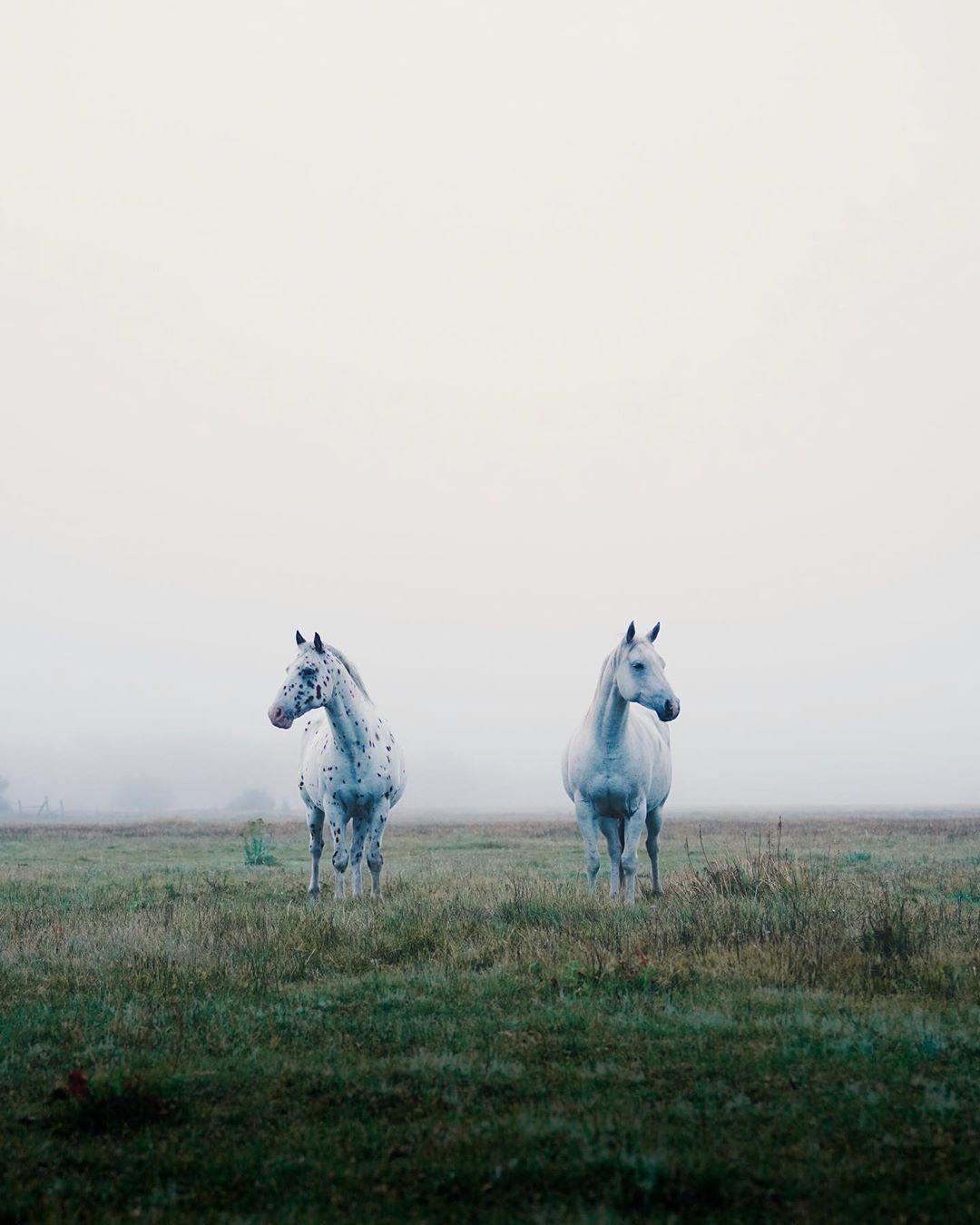 Снимки природы и путешествий от Эрика Уорда
