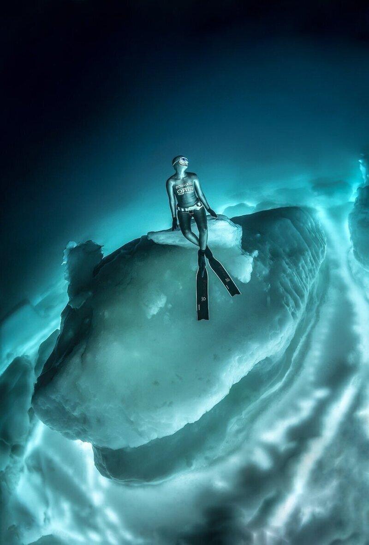 Дайверы сделали захватывающие снимки под айсбергами