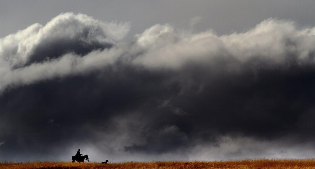 Ковбои и брыкающиеся лошади на снимках Лии Хеннел