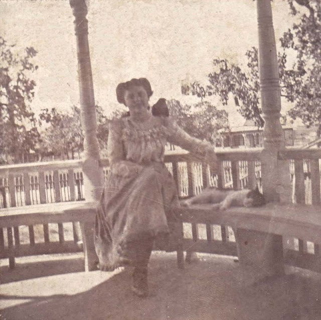 Котики были любимыми домашними питомцами ещё 100 лет назад