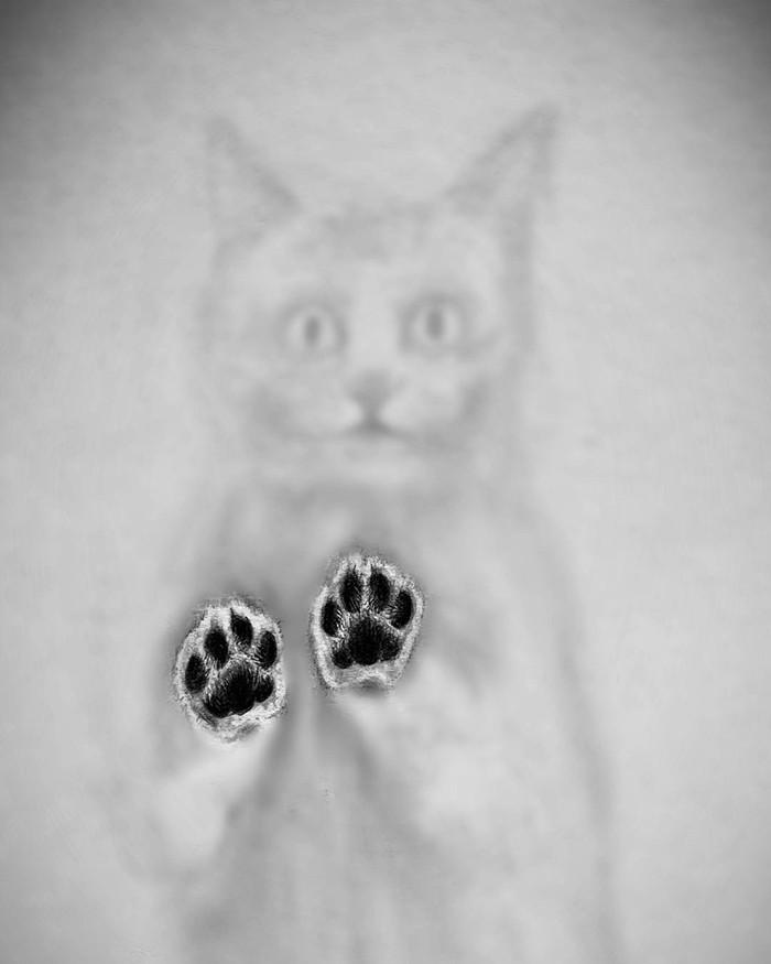Трёхмерные рисунки с помощью теней от Вилли Хсу