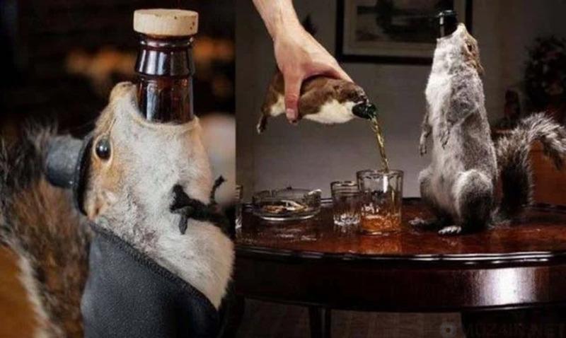 Очень странные алкогольные напитки