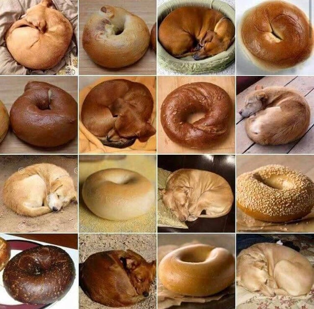 Несъедобные предметы, которые выглядят как еда