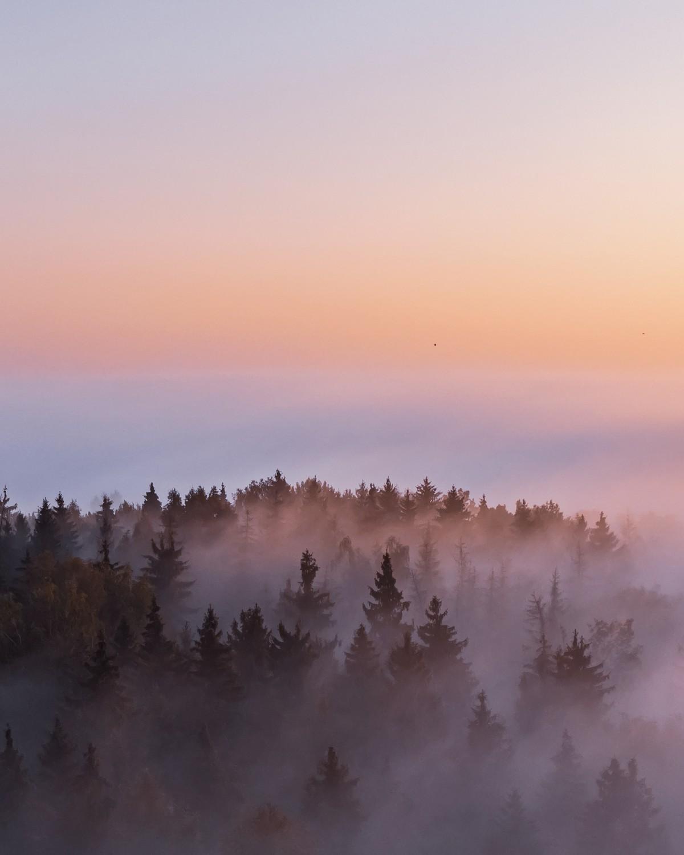 Красота природы Литвы на снимках Гиедры Бартас